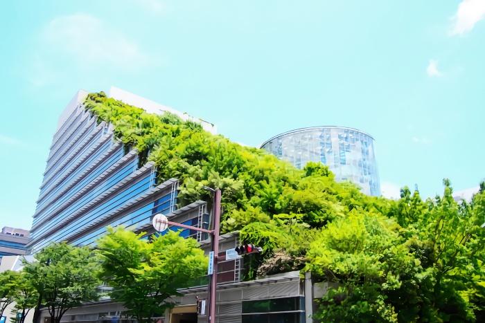 福岡市中央区の写真
